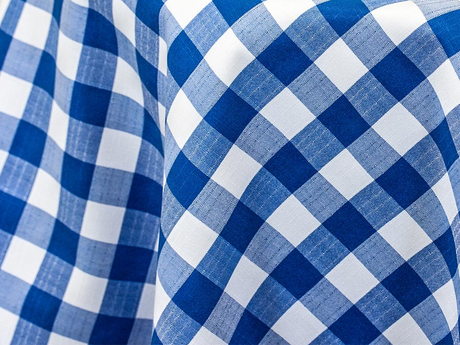 Blue & White Checked